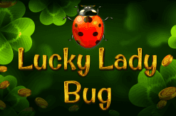 Lucky Lady Bug